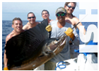 Link to Fishing Charters and Calendar