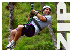 Link to Zipline Canopy Tour